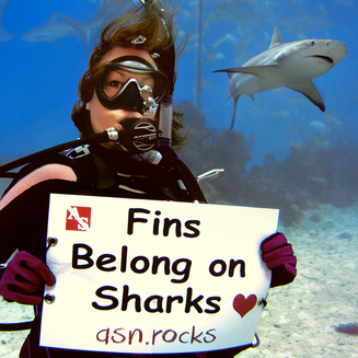 Save Sharks scuba diving