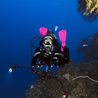 Underwater photography scuba diving lessons